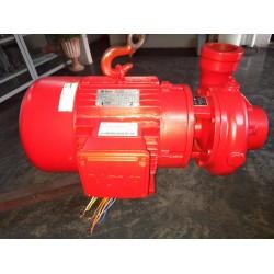 Bomba De Água THEBE THB-18 10cv Trifásica (semi-nova)